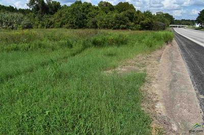 1517 STATE HIGHWAY 155, PALESTINE, TX 75803 - Photo 2