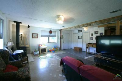 787 COUNTY ROAD 3185, COOKVILLE, TX 75558 - Photo 2