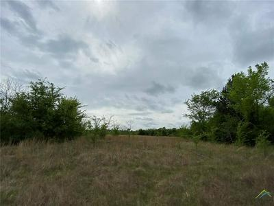 25 ACRES COUNTY ROAD 4766, SULPHUR SPRINGS, TX 75482 - Photo 2