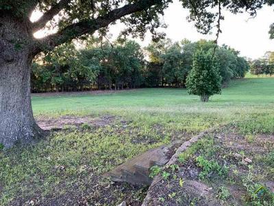 TBD CR 420, Tyler, TX 75704 - Photo 2