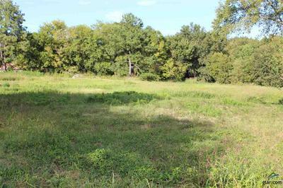 645 W QUITMAN ST, Emory, TX 75440 - Photo 2