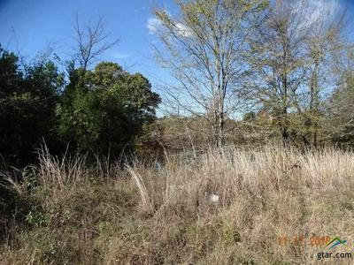 250 CFR 2745, MINEOLA, TX 75773 - Photo 2