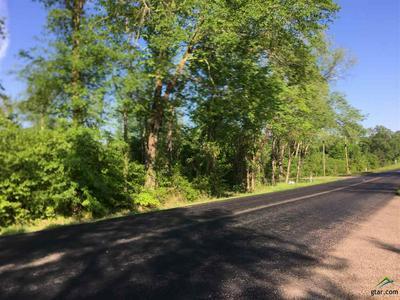 LOT 2 FM 16, Winona, TX 75792 - Photo 2