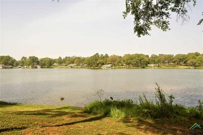 1045 COUNTY ROAD 3131, Jacksonville, TX 75766 - Photo 2