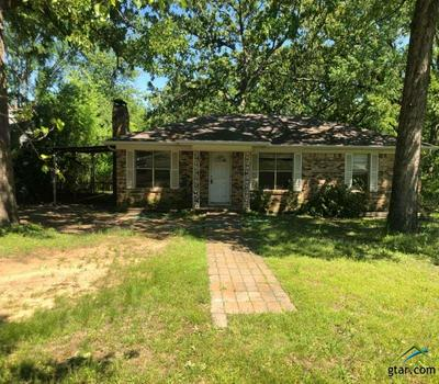 15179 COUNTY ROAD 195, TYLER, TX 75703 - Photo 1