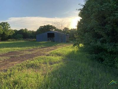 TBD CR 420, Tyler, TX 75704 - Photo 1