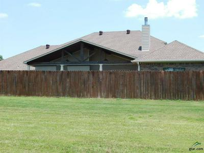 377 TIGER LILY, Diana, TX 75640 - Photo 2
