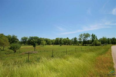 TBD CR 463 (WOODSPRINGS ROAD), Lindale, TX 75771 - Photo 1