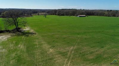 00 CR 4216, Naples, TX 75568 - Photo 2