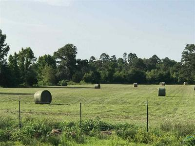 1477 COUNTY ROAD 3510, Leesburg, TX 75451 - Photo 2