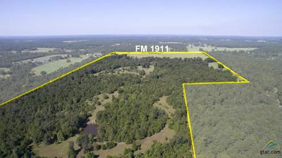 00 FM 1911, Alto, TX 75925 - Photo 1