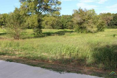 645 W QUITMAN ST, Emory, TX 75440 - Photo 1