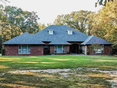 564 COUNTY ROAD 3353, Cookville, TX 75558 - Photo 1