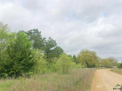 0 CR 4640, Avery, TX 75554 - Photo 2