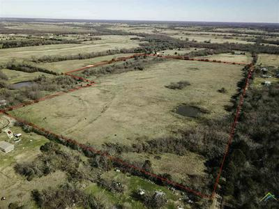 47 AC RSCR 1692, LONE OAK, TX 75453 - Photo 1