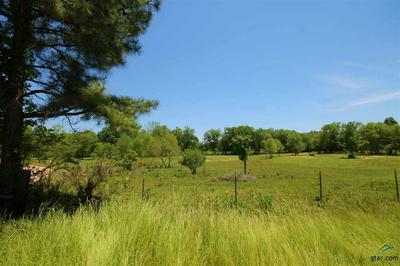TBD CR 463 (WOODSPRINGS ROAD), Lindale, TX 75771 - Photo 2