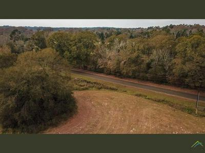 20649 COUNTY ROAD 2138, Troup, TX 75789 - Photo 2