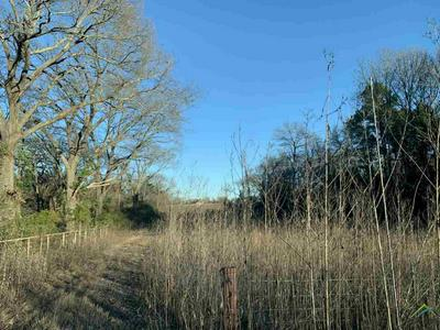 000 COUNTY ROAD 431, Lindale, TX 75771 - Photo 2
