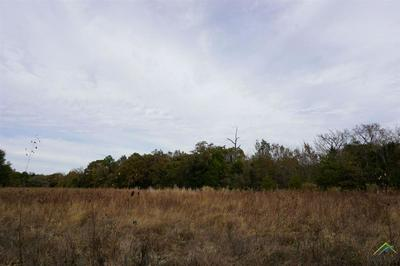 02 CR 1316, Malakoff, TX 75148 - Photo 2