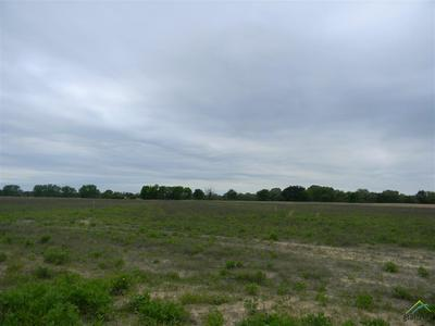 8700 CR 3614, Brownsboro, TX 75756 - Photo 1