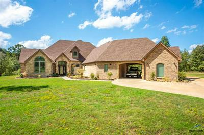 1806 MAE ONEY RD, Harleton, TX 75651 - Photo 1