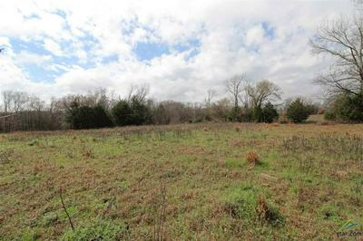 TBD CR 4614, Ben Wheeler, TX 75754 - Photo 1