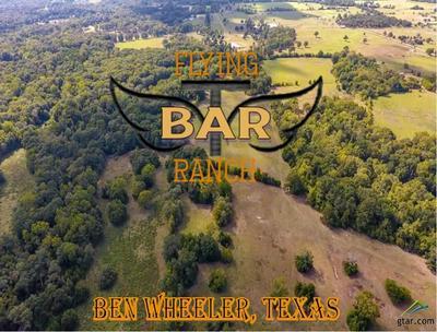 2203 FM 858, BEN WHEELER, TX 75754 - Photo 1
