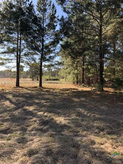 1032 COUNTY ROAD 4910, Troup, TX 75789 - Photo 2