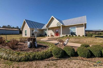 464 PR 4201, Leesburg, TX 75451 - Photo 1
