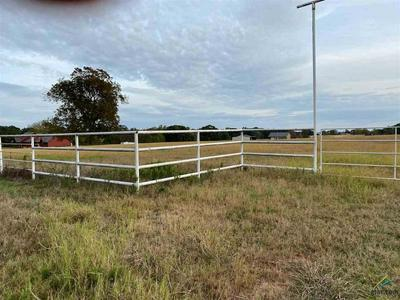 0000 VZ COUNTY ROAD 1512, Van, TX 75790 - Photo 2