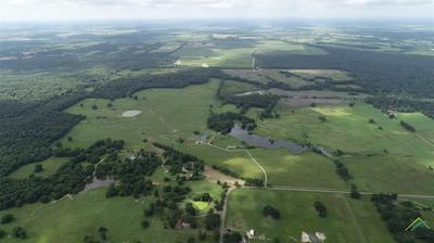 1740 COUNTY ROAD NE 2220, Talco, TX 75487 - Photo 2