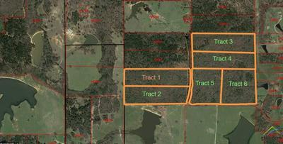 TRACT 6 CR 4420, Winnsboro, TX 75494 - Photo 1