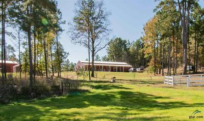 21028 STATE HIGHWAY 110 S, Troup, TX 75789 - Photo 1