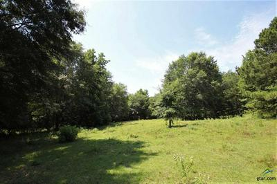 TRACT 2 CR 3170, Quitman, TX 75783 - Photo 1