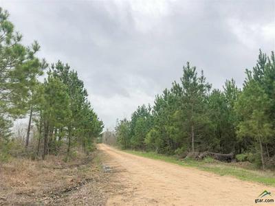0 CR 4450, Avery, TX 75554 - Photo 2
