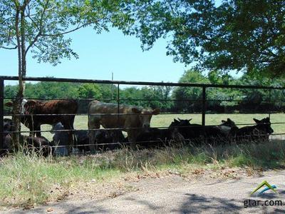 110 WEAKES ST, Eustace, TX 75124 - Photo 1
