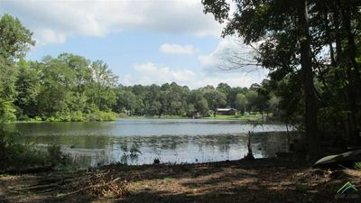 110 ACR 3865 CIRCLE R LAKE, Palestine, TX 75801 - Photo 2