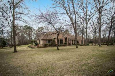 18650 BIG TIMBER RD, TYLER, TX 75703 - Photo 2