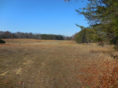 190 AC. WOODCLIFF RD., MONTEREY, TN 38574 - Photo 2