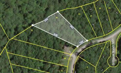20 STILLHOUSE BRANCH RD, SPARTA, TN 38583 - Photo 1