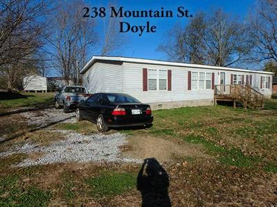 238 MOUNTAIN ST, DOYLE, TN 38559 - Photo 2