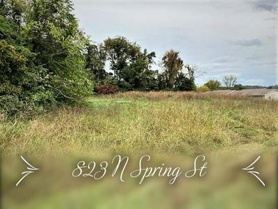 832 N SPRING ST, LIVINGSTON, TN 38570 - Photo 1
