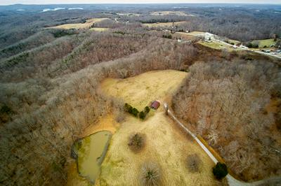 90 ACRES WILLOW GROVE HWY, ALLONS, TN 38541 - Photo 1