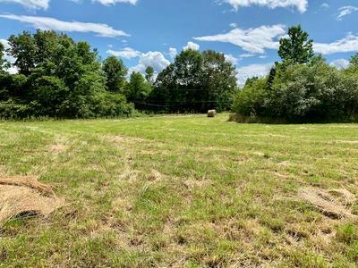 00 FOX HILL ROAD, Baxter, TN 38544 - Photo 1