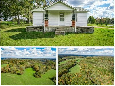 1022 OLD WEST POINT RD, SMITHVILLE, TN 37166 - Photo 1