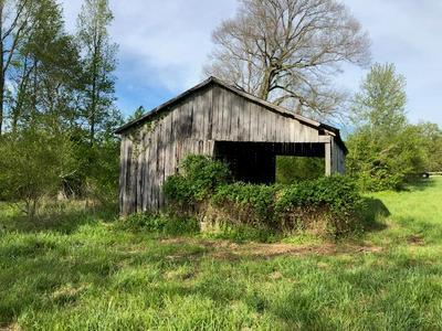 0 FRANKS FERRY RD., Walling, TN 38587 - Photo 1