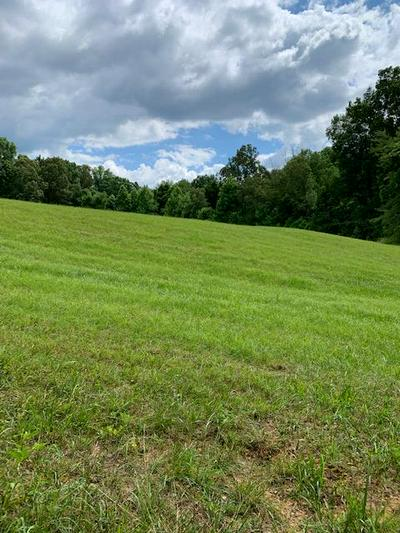 00 SE SIMMONS CEMETERY RD, QUEBECK, TN 38579 - Photo 1