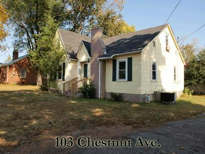 103 CHESTNUT AVE, COOKEVILLE, TN 38501 - Photo 1