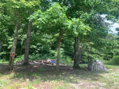 1016 SUNSHINE ESTATES RD, Jamestown, TN 38556 - Photo 2