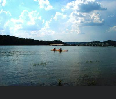 TRACT 8B TAYLOR RD, Byrdstown, TN 38549 - Photo 2